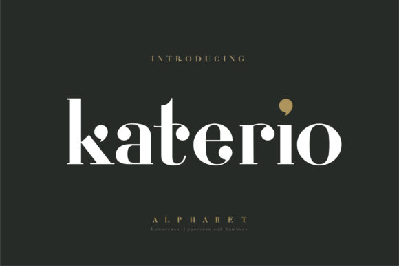 Print on Demand: Katerio Serif Font By geengraphy