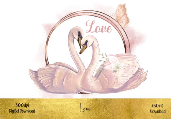 Swans in Love Graphic Illustrations By STBB