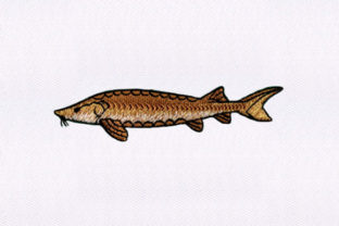 Brown Fish Design Fish & Shells Embroidery Design By DigitEMB