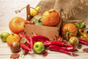 Print on Demand: Fall Decor with Pumpkin, Red Peppers, Graphic Holidays By TasiPas