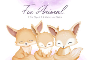 Fox Animal Collection Graphic Illustrations By alolieli