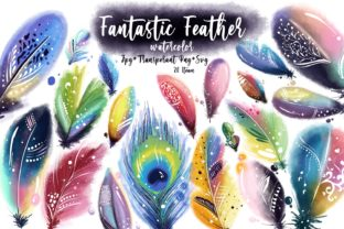 Fantastic Feather Collection Graphic Illustrations By ArtstudioByKhushbu