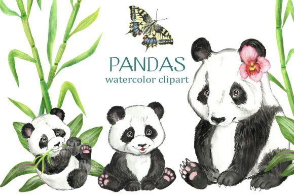 Panda Watercolor Clip Art. Cute Animals Graphic Illustrations By EvArtPrint