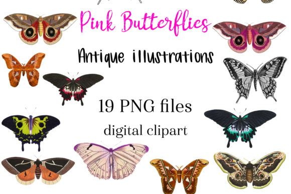 Print on Demand: Pink Vintage Butterfly Clipart Antique Graphic Illustrations By NatashaPrando