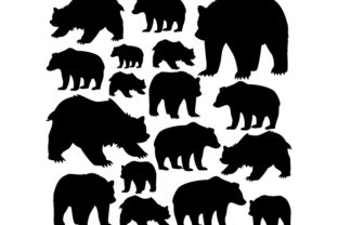 Bears Are Forest Dwellers on White Graphic Icons By ekimova_lisa