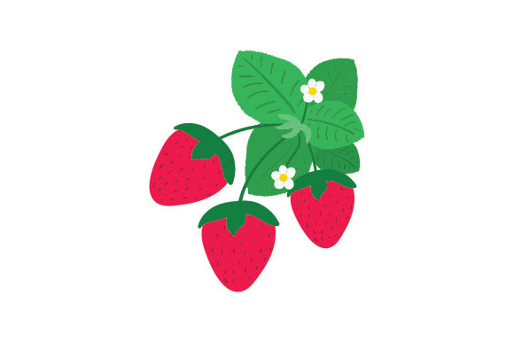 Strawberry Patch Food & Drinks Craft Cut File By Creative Fabrica Crafts