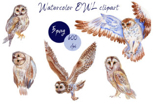 Print on Demand: BOHO Owl Clipart.Watercolor Woodland. Graphic Illustrations By ElenaZlataArt