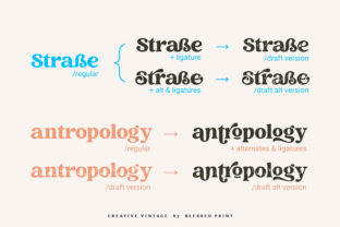 Print on Demand: Creative Vintage Display Font By Blessed Print 19