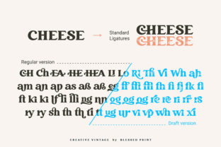 Print on Demand: Creative Vintage Display Font By Blessed Print 20