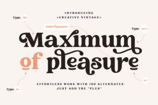 Print on Demand: Creative Vintage Display Font By Blessed Print 7