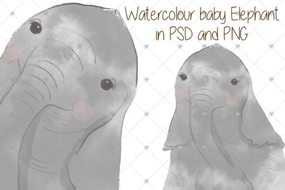 Print on Demand: Watercolour, Baby, Elephant, Zoo, Graphic Illustrations By essexprintingservice