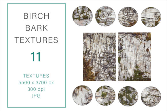 Print on Demand: Birch Bark Textures, Photography Texture Graphic Textures By AS Digitale