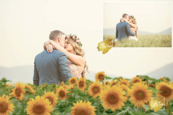 Print on Demand: 30 Happy Sunflower Photo Overlays Graphic Backgrounds By 3Motional
