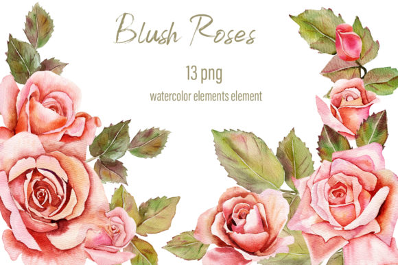 Print on Demand: Pink Blush Watercolor Floral Clipart Graphic Illustrations By ElenaZlataArt