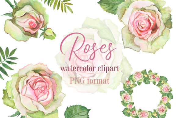 Roses Watercolor Clipart. Flower Frame Graphic Illustrations By EvArtPrint