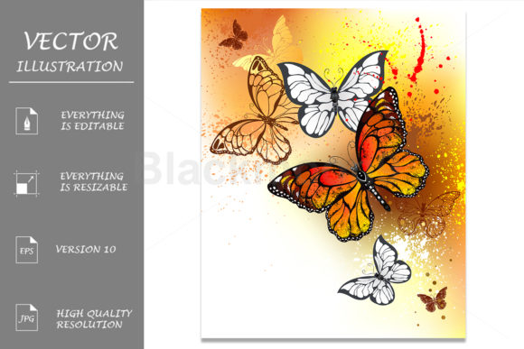 Summer Butterflies Monarchs Graphic Illustrations By Blackmoon9
