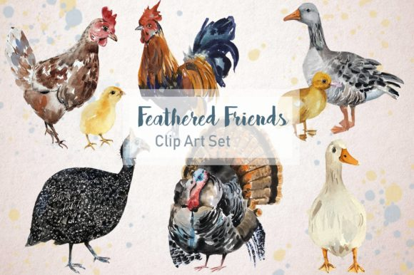 Feathered Friends Watercolor Clip Art Graphic