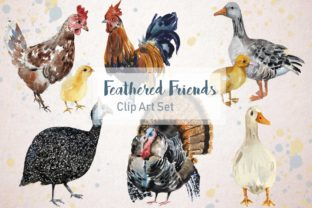 Feathered Friends Watercolor Clip Art Graphic Illustrations By tatibordiu