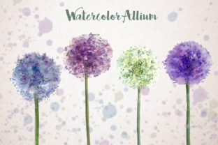 Print on Demand: Watercolor Allium Clip Art Set Graphic Illustrations By tatibordiu