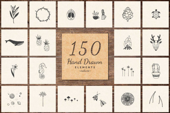 150 Hand Drawn Elements Nature Graphic Illustrations By michaelrayback