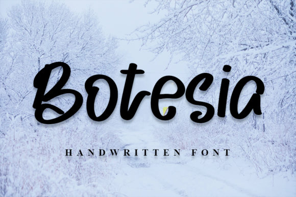 Print on Demand: Botesia Script & Handwritten Font By NYA Letter