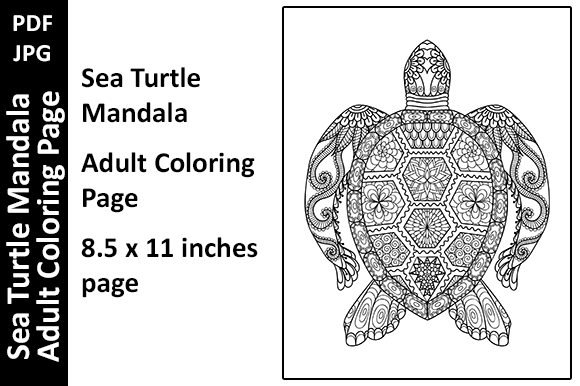 3 Turtle Coloring Page Designs & Graphics