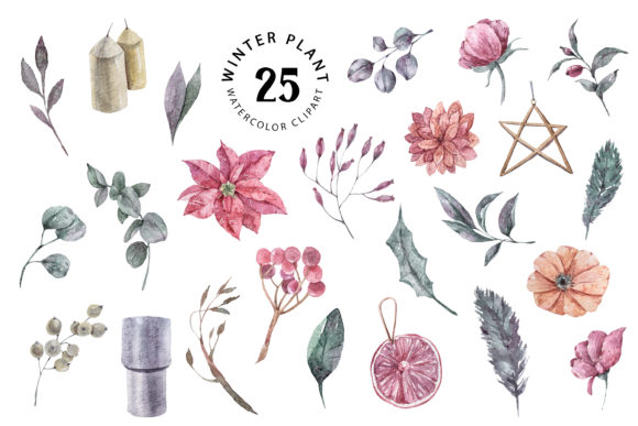 Christmas Watercolor Plants Clipart Graphic Illustrations By Tiana Geo