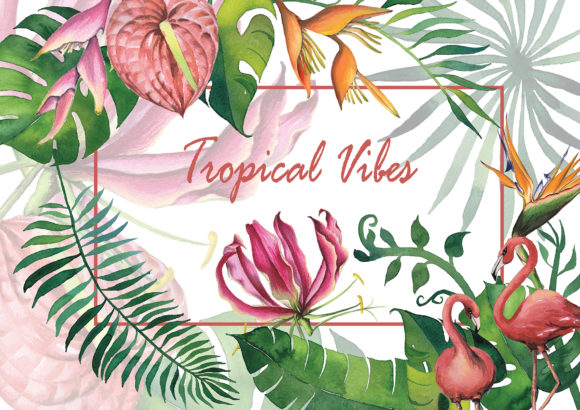Exotic Flowers and Tropical Vibes Graphic Illustrations By Dona Tonka