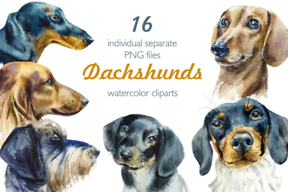 Watercolor Dachshund Grafik Objekte von Мария Кутузова