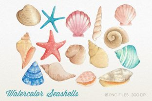 Watercolor Seashells Clipart Graphic Illustrations By peachycottoncandy