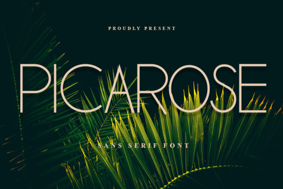 Print on Demand: Picarose Sans Serif Font By Inermedia STUDIO