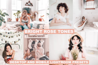Lightroom Presets Bright Rose Tones Graphic Actions & Presets By Visual Filters
