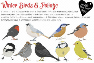 Winter Birds and Foliage Graphic Illustrations By My Little Black Heart