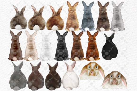 Watercolor Bunny Clipart Rabbit Png Kids Graphic Item