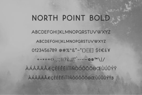 North Point Font Font