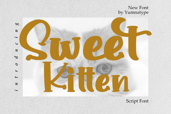 Print on Demand: Sweet Kitten Script & Handwritten Font By Yumna_Type