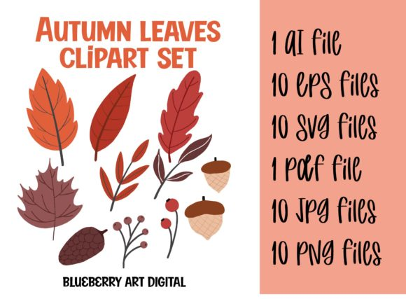 Autumn Foliage Leaves Clipart Set Graphic Illustrations By Blueberry Art Digital