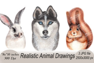 Realistic Animal Portraits Set Graphic Illustrations By arevkasunshine