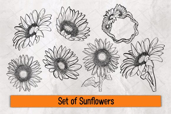 Set of Sunflowers Graphic Crafts By TakeNoteDesign