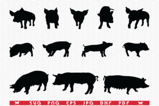 Pigs Piggy Sow, Black Silhouettes Graphic Icons By DesignStudioRM