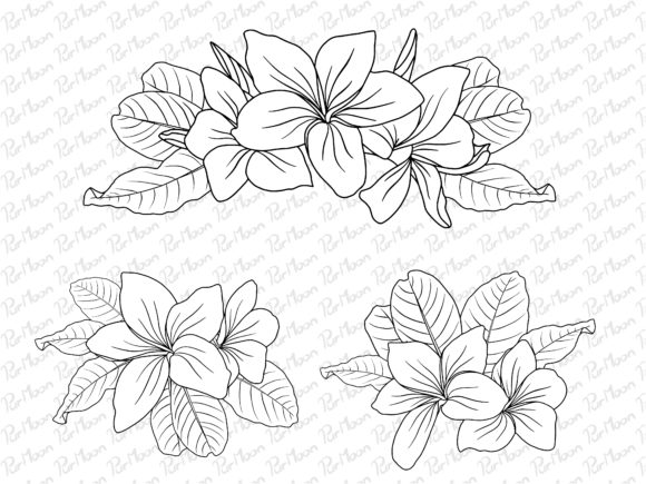 Flowers Line Art Arrangements Graphic Illustrations By PurMoon