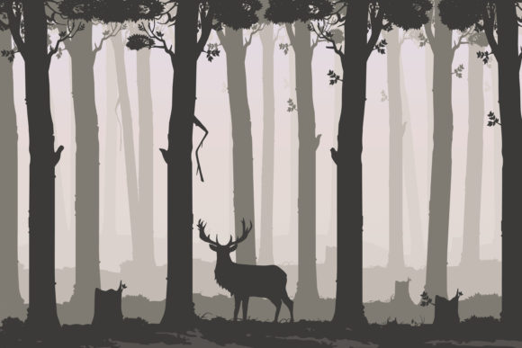 Flat Background with Deciduous Forest Graphic Illustrations By Sergey360