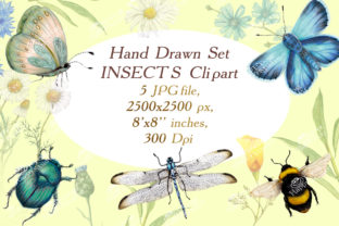 Hand Drawn Insect Cliparts Graphic Illustrations By arevkasunshine
