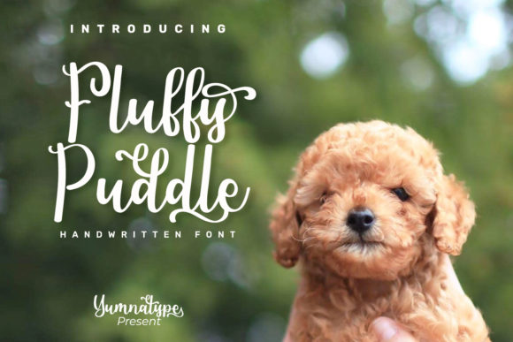 Print on Demand: Fluffy Puddle Script & Handwritten Font By Yumna_Type