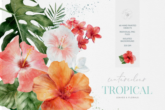 Tropical Flowers Leaves Watercolor Graphic