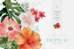 Tropical Flowers Leaves Watercolor Graphic Illustrations By Busy May Studio