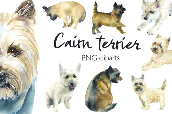 Watercolor Cairn Terriers Graphic Objects By Мария Кутузова