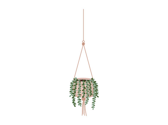 Print on Demand: Succulent Cactus String of Pearls Grafik Illustrationen von Musbila