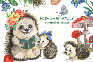 Hedgehogs Clipart. Cute Forest Animals Graphic Illustrations By EvArtPrint