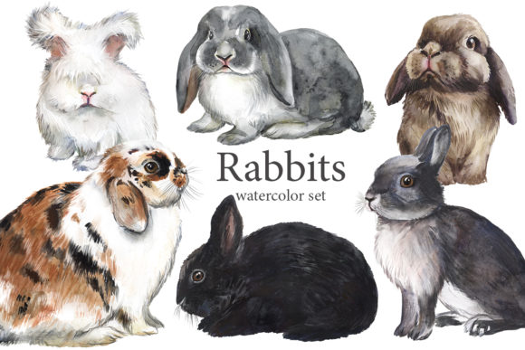 Rabbits Watercolor Clipart, Fluffy Pets Graphic Illustrations By EvArtPrint